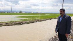 Patnos'ta ekili tarım arazileri zarar gördü