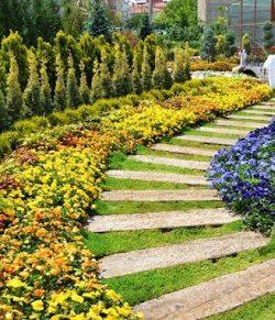 Sulama göleti çevresi bitkisel peyzaj yapım işi
